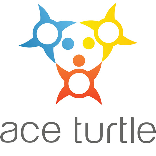 Ace turtle services logo