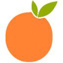 OrangeTwig logo