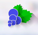 Blackcurrant Apps logo