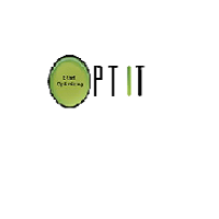 Opt IT Technologies India Pvt Ltd logo