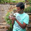 Job poster profile picture - Saketh Bsv